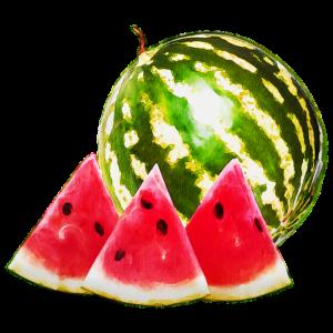 Wassermelone mit Stücken