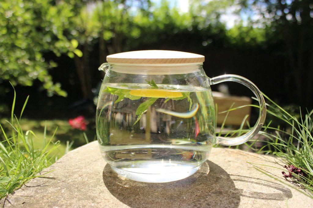 Depurative Gurke Lemon-Mint Infusion