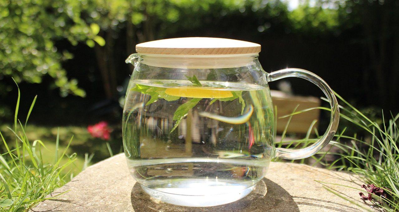 Infusion Water – Depurative Gurke Lemon-Mint Infusion